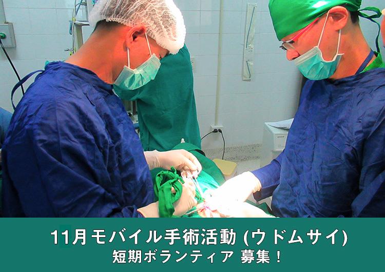 11月モバイル手術活動(ウドムサイ)– 短期ボランティア