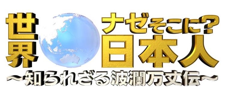 世界なぜそこに?日本人 ジャパンハート