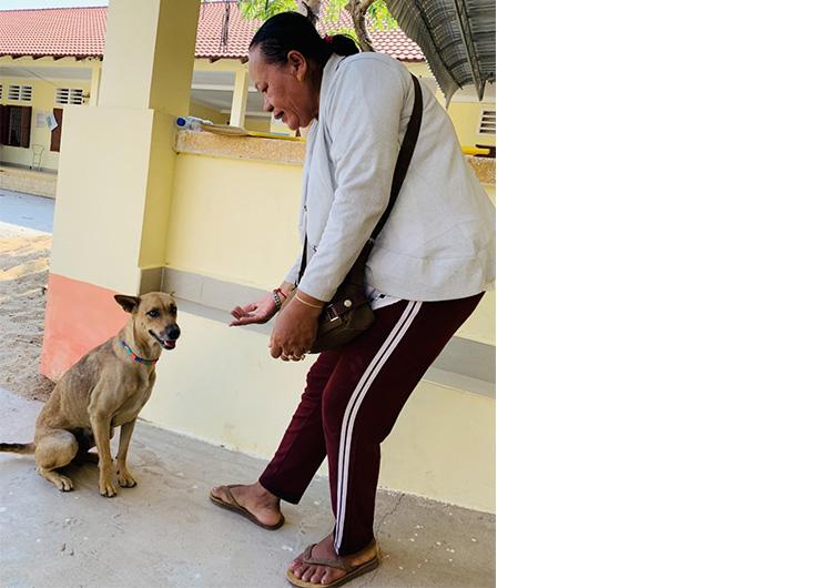 看護師 海外 手術活動 ボランティア ジャパンハート