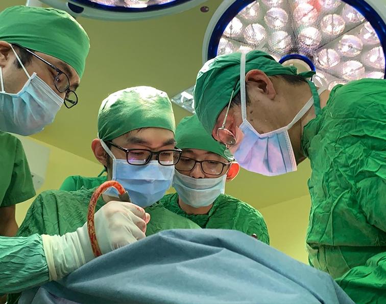 慶応大学病院と連携して日本でも難しい手術を実現することができました。